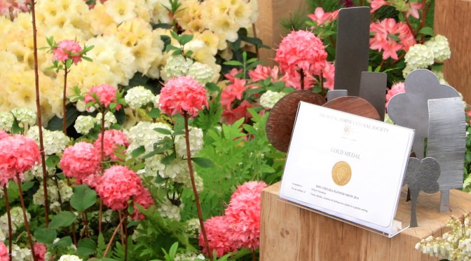2015 Convention Flower Show – Artistic Winners